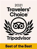 2020 TripAdvisors