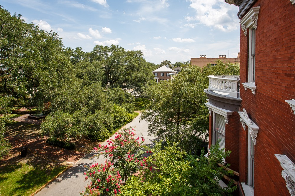 View from Oglethorpe Room
