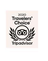 2020 TripAdvisors Travelers
