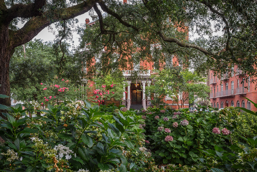 Looking at The Kehoe House through the Savannah Oak Trees
